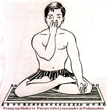 Pranayam mudra
