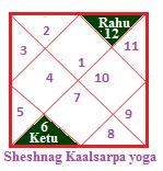 Sheshnag kaalsarpa yoga